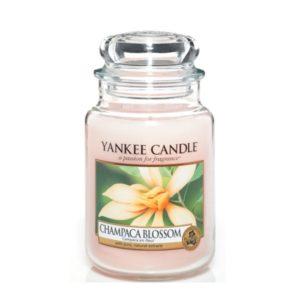 champaca-blossom-giara-grande-yankee-candle