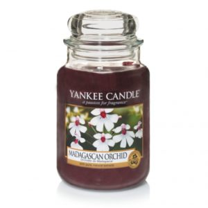 madagascan-orchid-giara-grande-yankee-candle