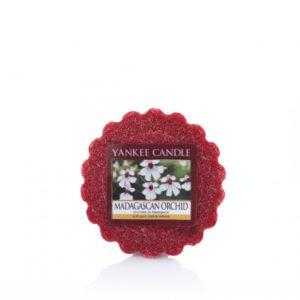 madagascan-orchid-tartina-yankee-candle
